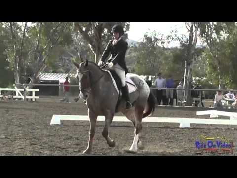 047D Erin Kellerhouse - Cristal Open Preliminary Dressage Galway Downs February 2013