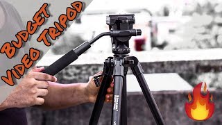 Budget FLUID HEAD Tripod for YouTubers / Filmmaker | Under Rs 2000/-