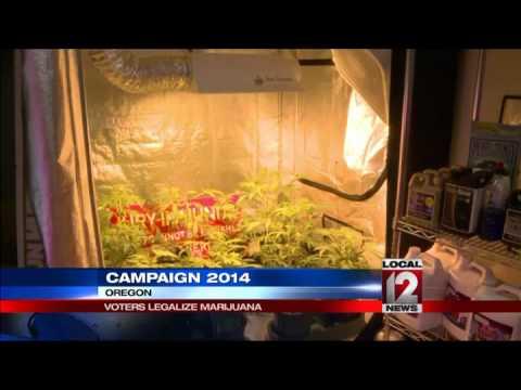 Oregon, Washington D.C. legalize marijuana