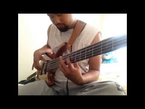 I Am Disco Dancer Bass Cover {rojin} video