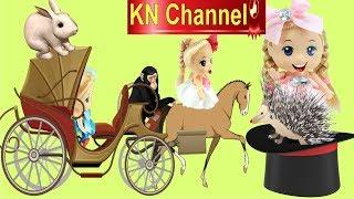 KN Channel ĐI XEM XIẾC THÚ VUI NHỘN TẬP 2 CON NHÍM DIỄN XIẾC