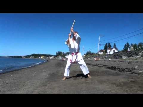 Shinbu-ryu Chito-ryu karate-do Rohai-dai no bo by Jean Noel Blanchette 7 Dan