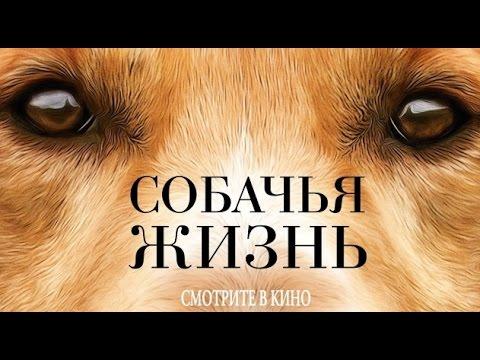 Собачья жизнь (2017) Трейлер к фильму (Русский язык)