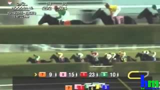 2015 Canadian International Stakes Gr I - Cannock Chase - Woodbine