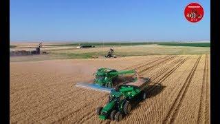 2018 Wheat Harvest near Johnson Kansas