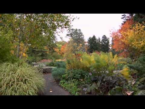 Treasures of New York: The New York Botanical Garden