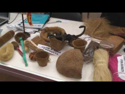 Máquina para la obtención de fibras de coco