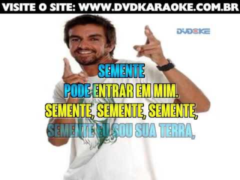 Armandinho   Semente