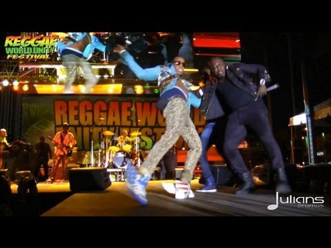 2013 Reggae World Unity Concert - Elephant Man Performance (Miami 1-20-2013)
