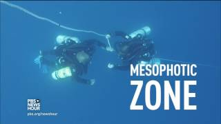 Diving into the deep ocean to find hope for threatened coral reefs