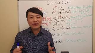 NYOB ZOO 你好 ni hao, Kawm Lus Suav Kev Sib Ntsib Sib Hu Greeting in Chinese