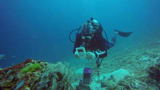 mpacplus-  The first of waterproof touchscreen case underwater