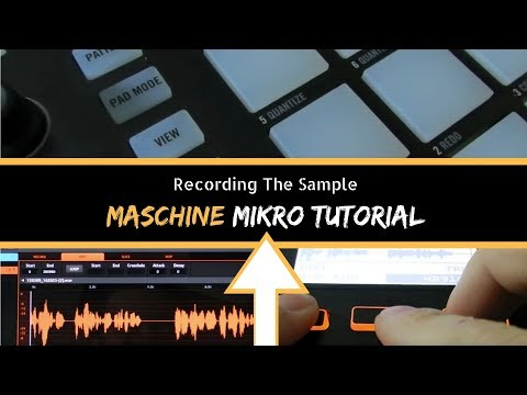 Maschine Mikro Tutorial - Recording a Sample