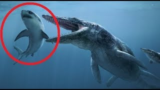 Animals That Walked With DINOSAURS