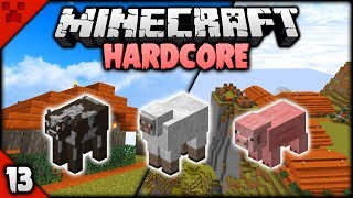SUPER EASY MINECRAFT NANO ANIMAL FARMS! | Minecraft HARDCORE Survival Let's Play | Episode 13