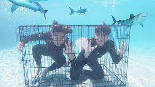 Last To Escape UNDERWATER CAGE Wins $20,000!