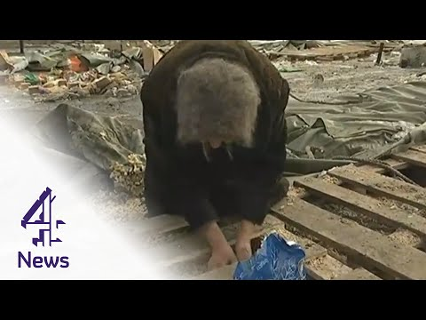 Ukraine crisis: the people digging for food in the ruins of Debaltseve