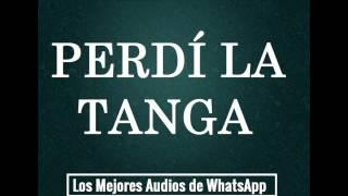 PERDÍ LA TANGA - Los Mejores Audios De WhatsApp