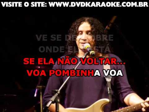 Fernando Mendes   Voa Pombinha