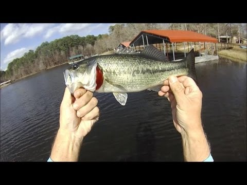 Pre Spawn Bass Fishing Toledo Bend Jan 25 2013