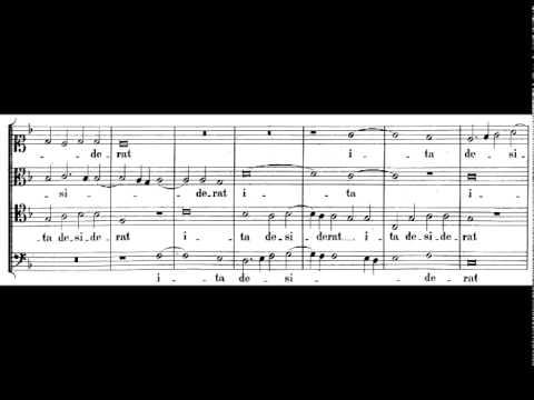 Палестрина Джованни - Sicut cervus