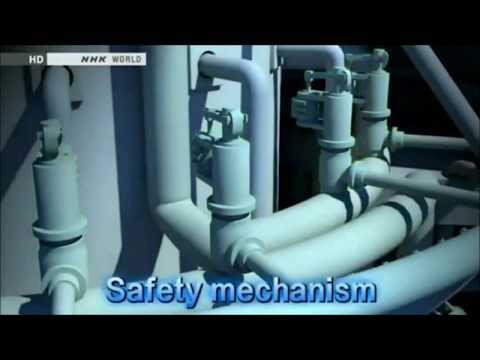 """[FUKUSHIMA REVIEW] """"Fukushima Radiation Fallout Fukushima Radiation Crisis USA Radiation Fallout"""""""