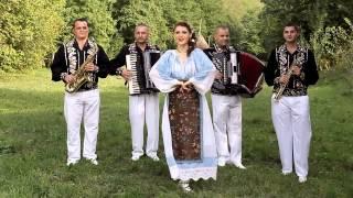 Dana Gruescu si Formatia Titel Brestovicean - Scutura-ce roua