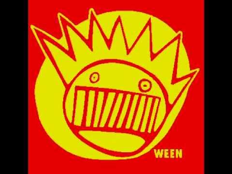 Sons Of Boognish - Shamemaker ( ween cover )