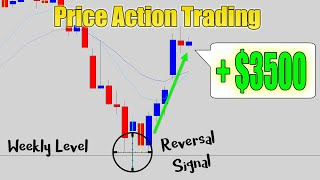 *PRICE ACTION VIDEO!* Catching Major Reversals @ Weekly Levels - Simple Strategy Returns $3500!