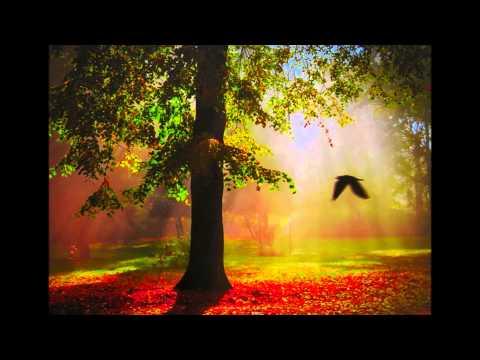 Тінь Сонця - По вранішній зорі