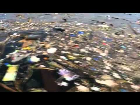 Sailor crashes into floating rubbish in Rio 2016 Olympic course