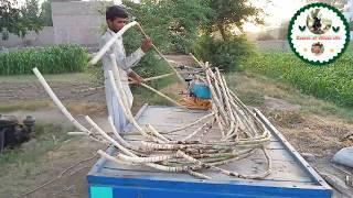 National Juice of Pakistan Sugarcane Juice Ganny ka Rus Farmer life in village 34 Variety sugarcane