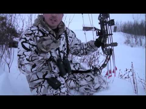 Wild Boar Bowhunt in Saskatchewan