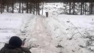 Горе охотник прикол на охоте
