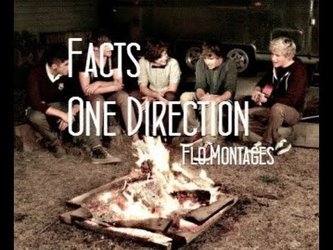 One direction Fact Partie 1 (Francais)