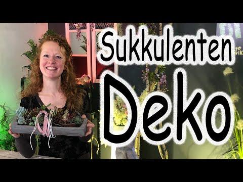 DIY: Sukkulenten Deko | Tischdeko | Sukkulenten Pflanzen | Sommerdeko | Holzdeko | Floristik24