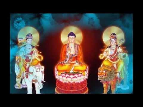 Diệu Âm - Niệm Phật Hộ Niệm Vãng Sanh Vấn Đáp - 5/24