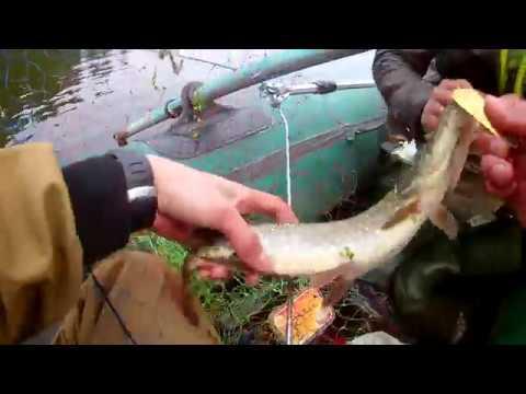 ловля на реке осенью на спиннинг видео