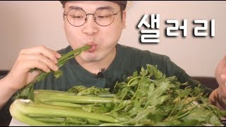 Crunchy vegetable salad real sound mukbang