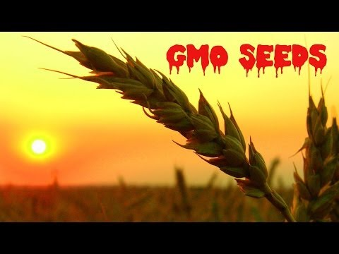 China Stealing American GMO Seeds | China Uncensored