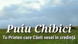 Puiu Chibici Tu Prieten Care Cânti Vesel în Credință