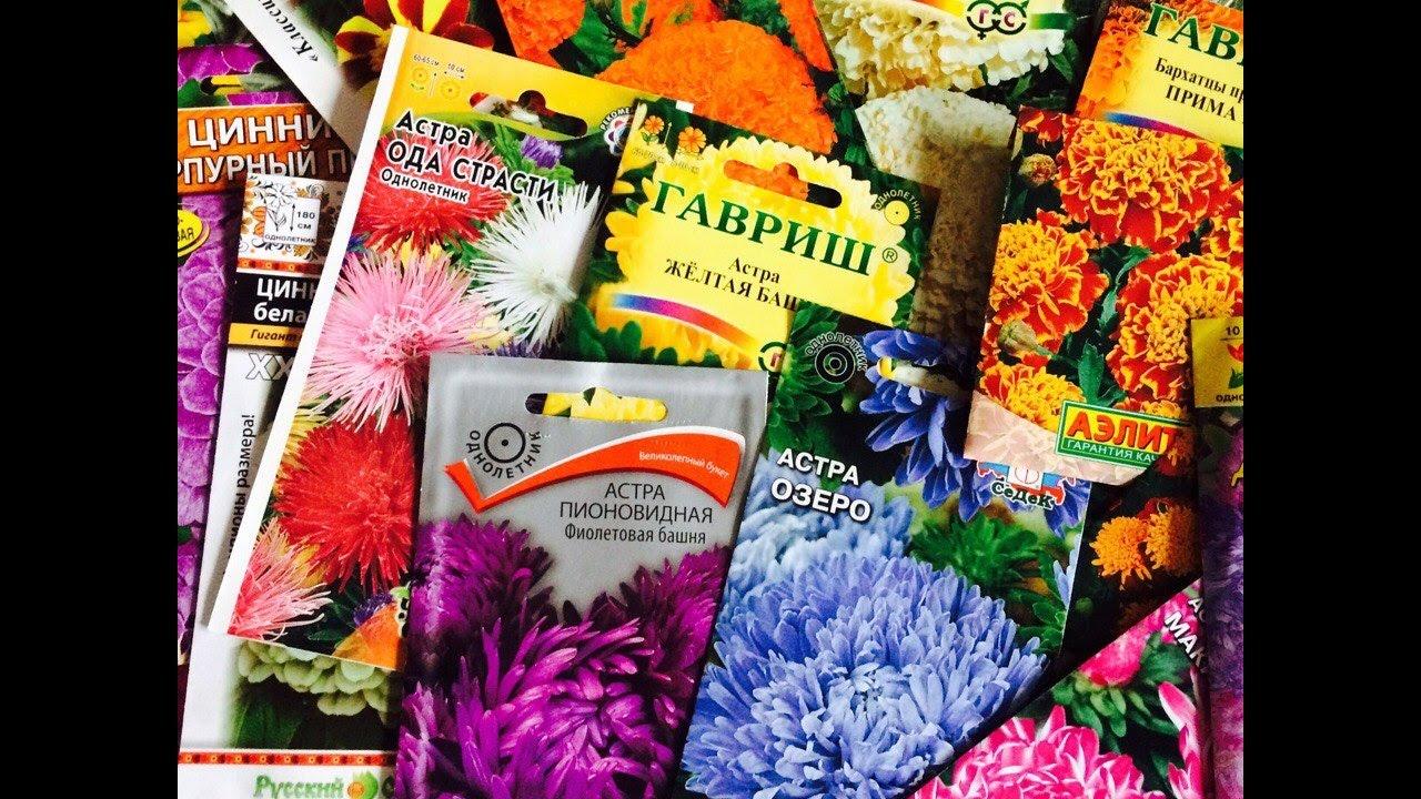 Семена цветов которые сажают в грунт 880