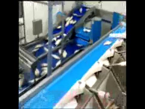 Túnel de congelación espiral S-CYCLONE | Spiral freezing tunnel S-CYCLONE