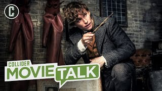 Fantastic Beasts 2: Worst Box Office Debut in Harry Potter History - Movie Talk