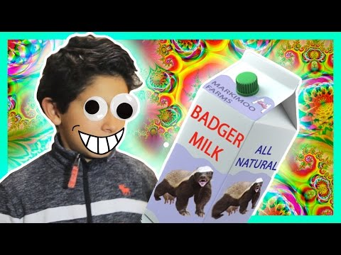 Badger Milk Makes Me Crazy