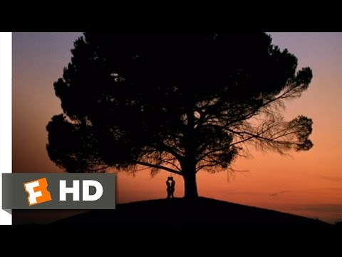 Heaven (11/12) Movie CLIP - In Love (2002) HD