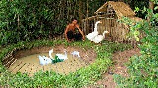 Build Swimming Pool For Goose Around Underground House