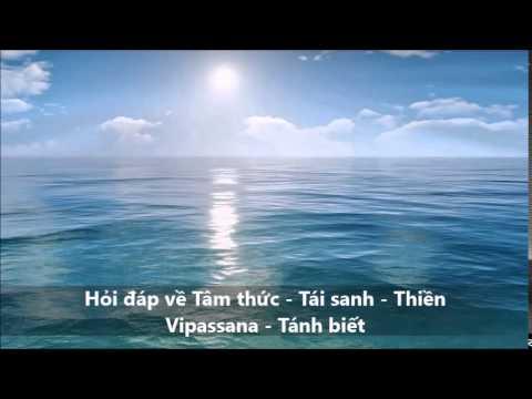 Hỏi đáp: Tâm thức - Tái sanh - Thiền Vipassana - Tánh biết