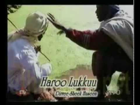 Baalee dirree shekhusien oromia oromiyaa oromoo