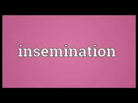 Insemination Meaning